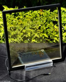 transparante solarcel