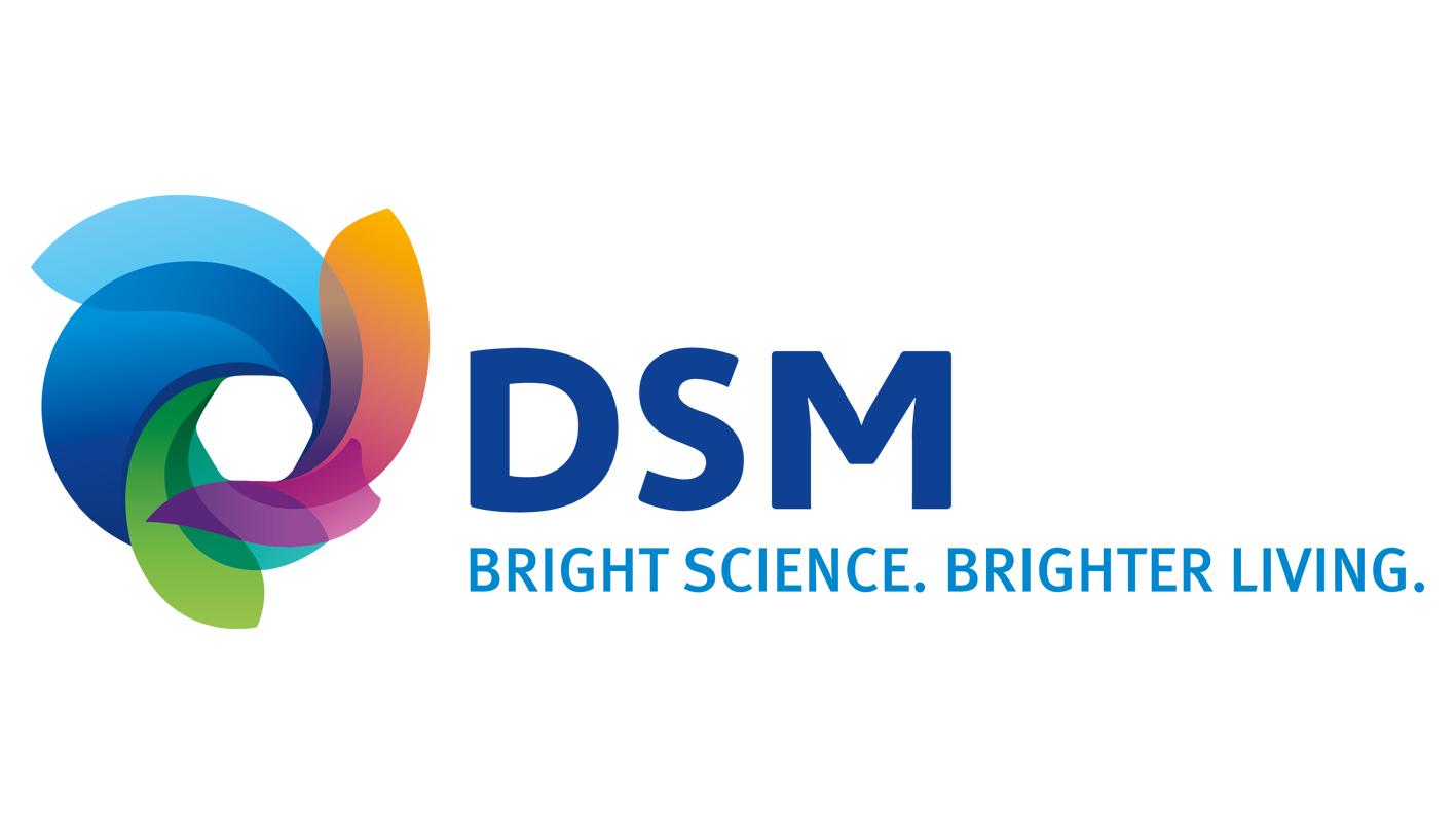 DSM in nanotechnologie • Glas in Beeld